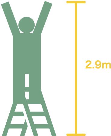 高さ2.9m